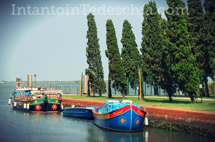 isola san francesco venezia