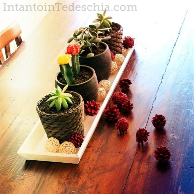 piante tavolo legno grezzo