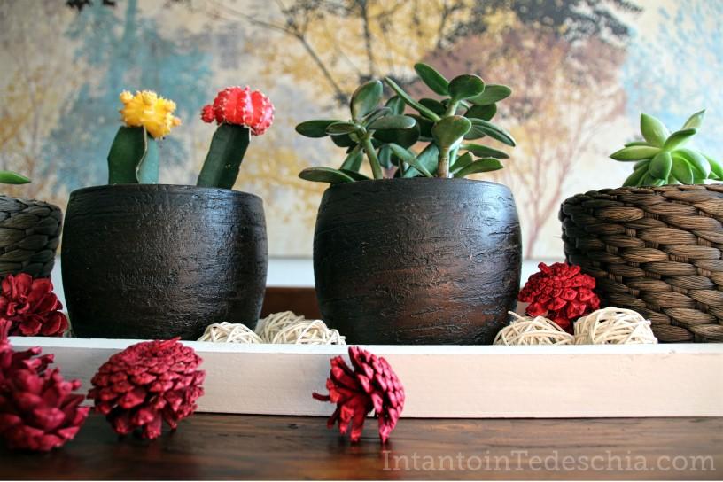 decorazioni autunno piante casa