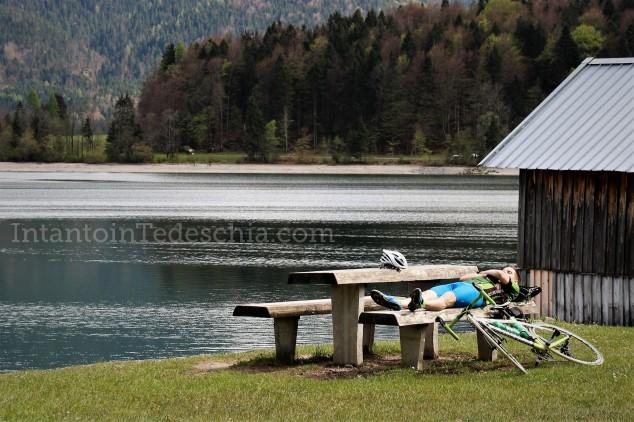 Baviera Turismo Alpi Bavaresi Camminare Montagna Herzogstand Walchensee